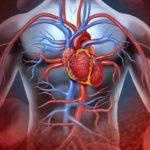 Що потрібно знати про серцеву недостатність
